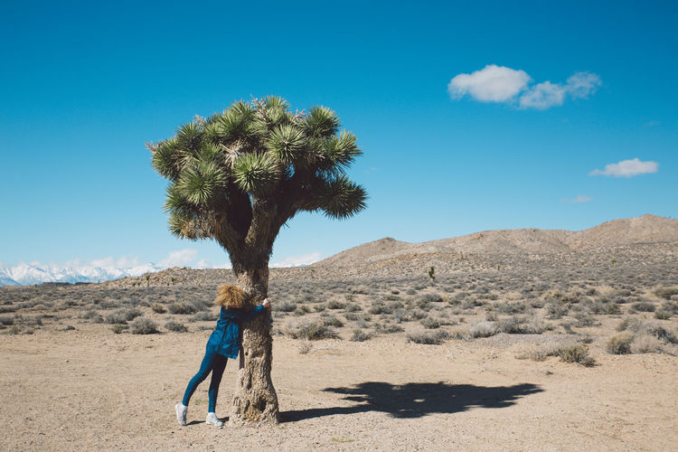 Arid Climate Arid Landscape Beauty In Nature Curly Hair Day Death Valley Death Valley National Park Desert Desert Girl Joshua Tree Landscape Mountains Nature Nature One Person Outdoors Palm Tree Real People Roadtrip Shadow Sky Standing Sunlight Tree