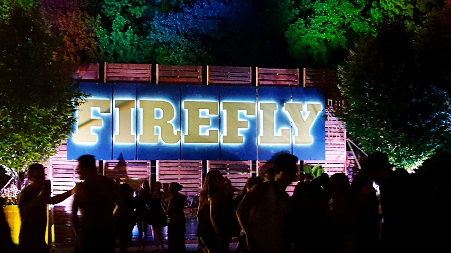 2015 Firefly Music Festival Music Musicfestival Tree Outdoors Text Tree Outdoors First Eyeem Photo