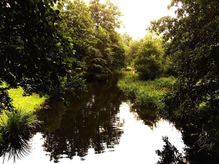 Lübben Nature Water Reflections Sunday Morning SundayFunday Relaxing