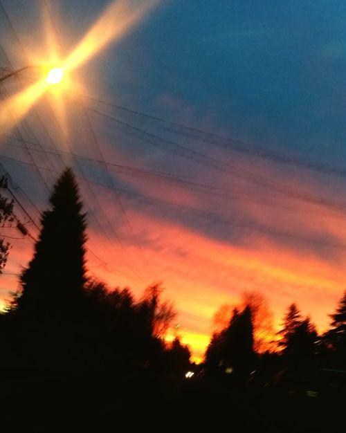 Sunset Sky Transportation Sunlight Beauty In Nature Outdoors Nature Sun No People Tree Sunbeam Cloud - Sky