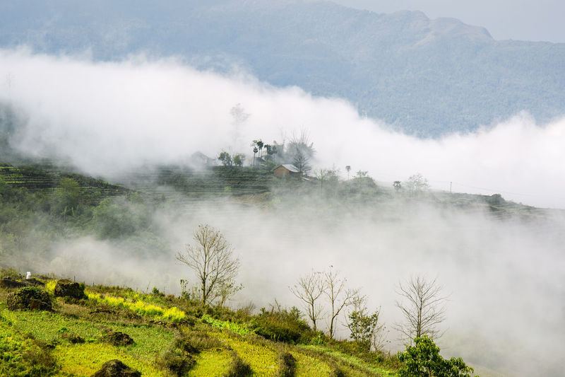 Spring on the mountain Cloud - Sky Heritage Lanscape Photography Mountain Photography Spring Flowers Travel Photography Vietnamphotography