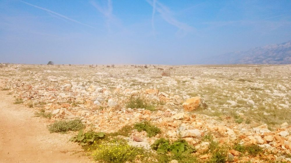 Somewhere in croatia Nature Growth Desert Day Outdoors Plant Scenics No People Landscape Beauty In Nature Sky