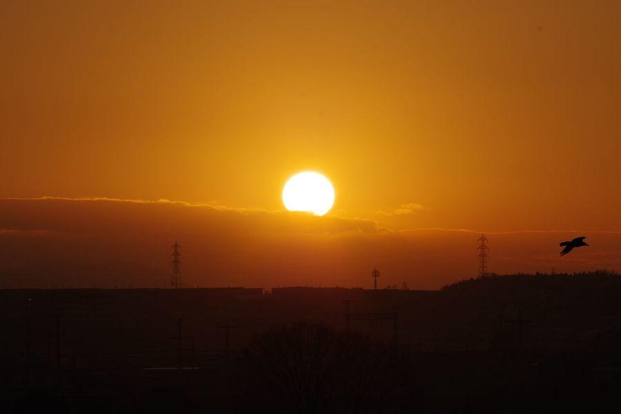 Sunrise Firstsunrise 淀川