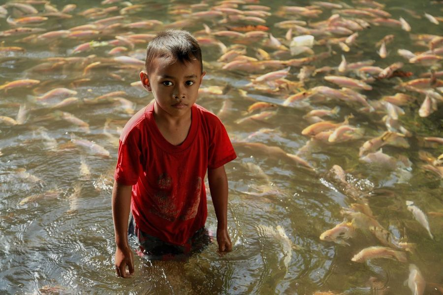 Playing with fish Travel Destinations Fishes Child Childhood Water One Person Boys Men The Portraitist - 2018 EyeEm Awards