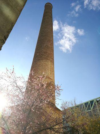 Sky Tree Architecture Chimney Bricks