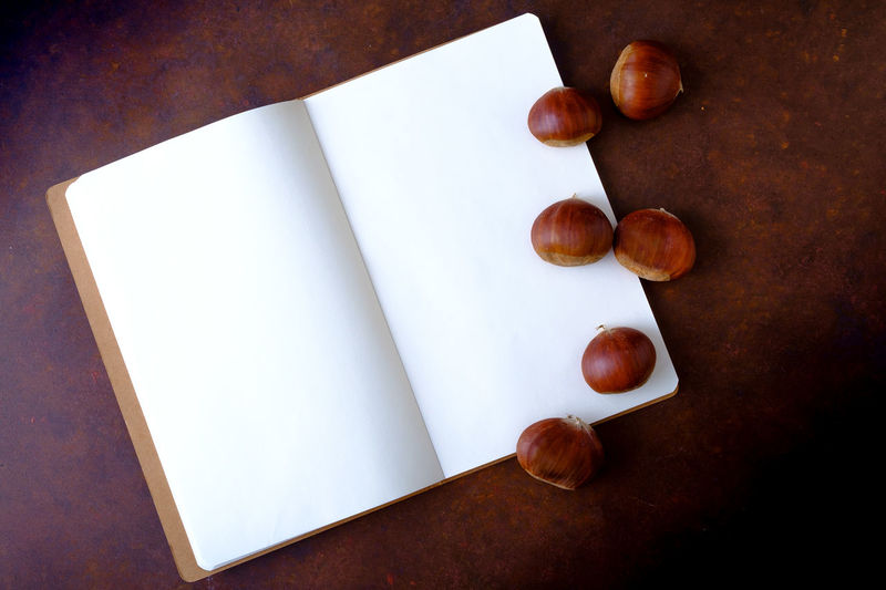 Chestnuts on the table with copy space Chestnuts Copy Space Menu Agenda Blank Brown Close-up Directly Above Food Food And Drink Freshness Fruit Healthy Eating High Angle View Indoors  No People Notebook Nut Nut - Food Paper Still Life Table Wellbeing White Color Wood - Material