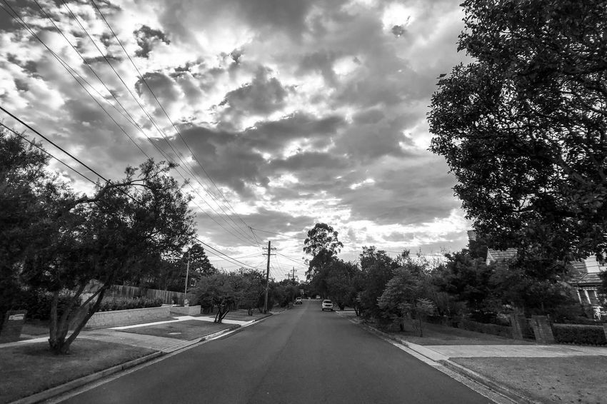 The road ahead Monochrome Black And White Blackandwhite Tree Road The Way Forward Transportation Sky Cloud - Sky Street Outdoors Day No People Nature Scenics Beauty In Nature Telephone Line City