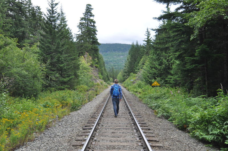 Rear View Of Person On Railroad Track Amidst Trees Against Sky