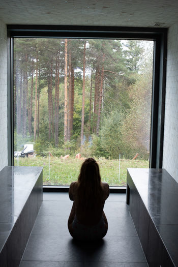 Rear view of woman sitting on window in forest
