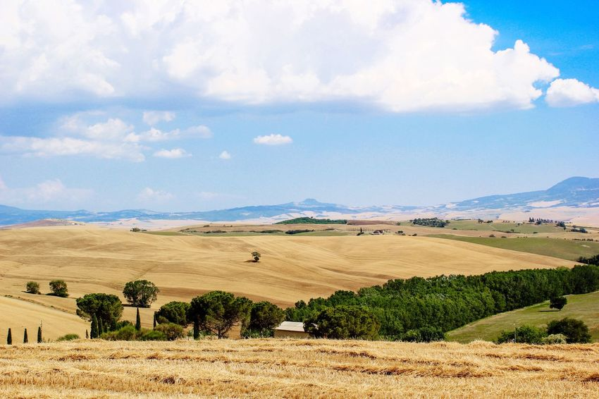 Landscape Sky Nature Beauty In Nature Outdoors My Favorite Place Toscana Toskana,italy Toskana TakeoverContrast