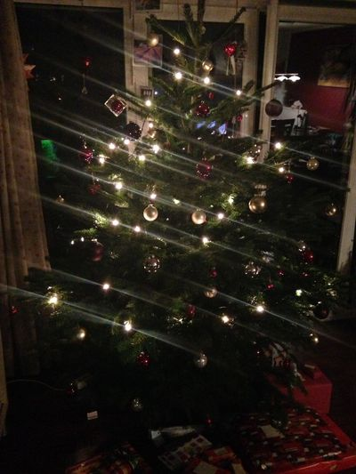 Christmas Christmas Tree X-mas Weihnachten Weihnachtsbaum Dezember 2024
