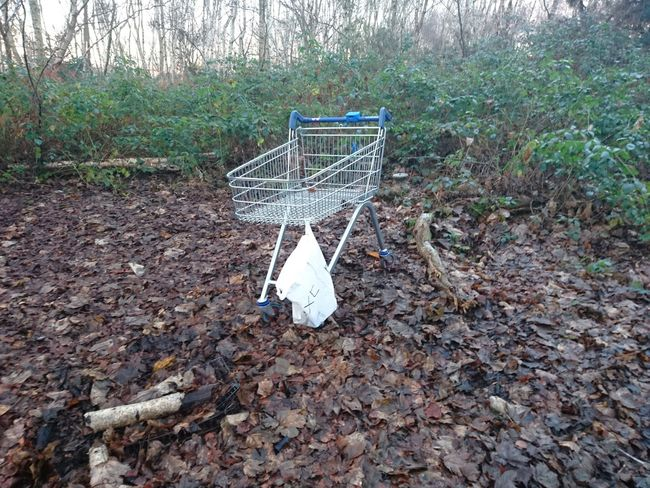 Nature No People Tree Outdoors Day Field Shopping Cart