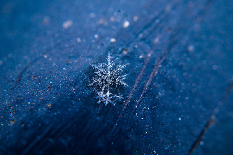 snow flake Cold Temperature Winter Snow Ice Snowflake Frozen Close-up Blue Nature Selective Focus No People Crystal Fragility High Angle View Backgrounds Frost Vulnerability  Celebration Focus On Foreground Small