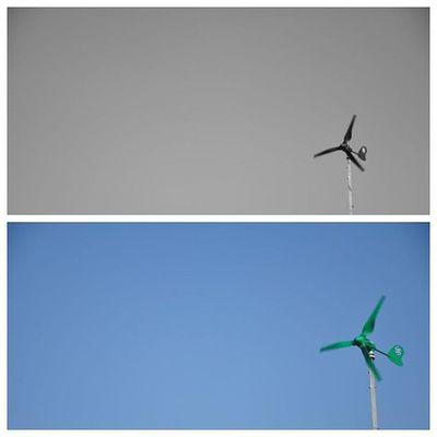 Picframe Nikonphotographers Nikon Camera wind windy b&w black&white fan green bluesky blue @natgeo