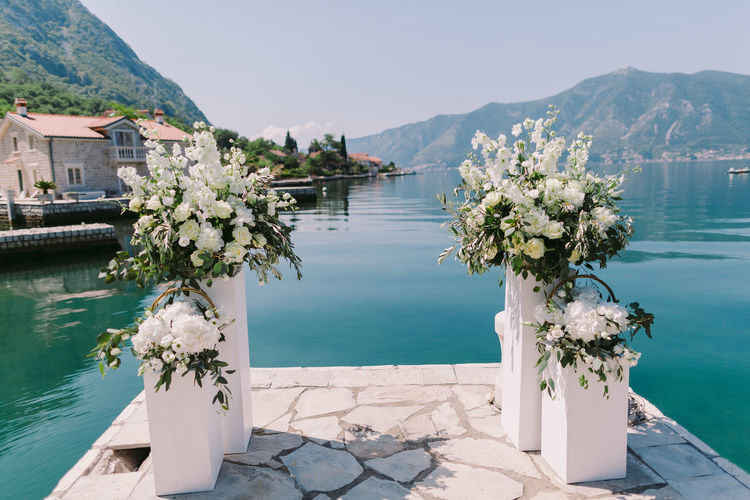 Flowers arranged on pier against lake in sunny day
