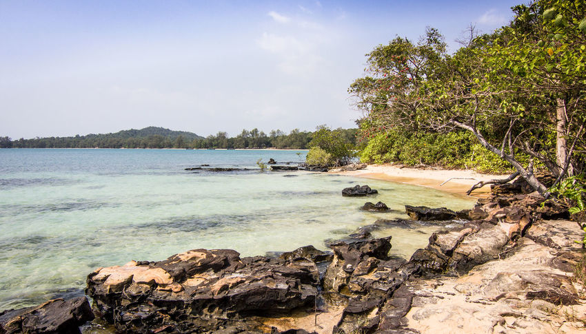 Beach Beauty In Nature Cambodia Day Explore Growth Holidays Idyllic Island Nature No People Ocean Outdoors Rain Forest Roots Scenics Sky Southeastasia Summer Swimming Tourism Tranquil Scene Tranquility Tree Water