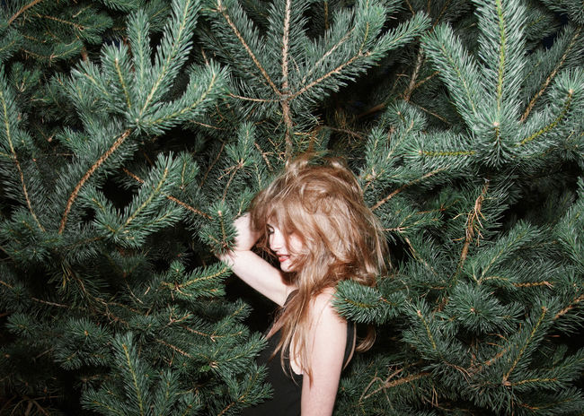 Hedgehog Concept Beauty Brunette Comfy  Conifers Evergreen Forest Girl Linas Was Here Long Hair Model Needles Smile Woods The Week On EyeEm Editor's Picks