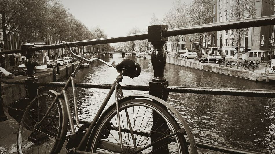 Bike Gracht Amsterdam Netherlands Bicycle Water Kanal Fahrrad Geländer Railing Blackandwhite Schwarzweiß B&w B&w Street Photography
