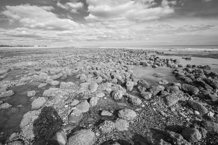 Sea view at low tide of Pett Level cliff end exposing rock formations covered with sea life growth and the emains of ancient forest Ancient Ancient Forest Buried By Sea Black & White Clouds And Sky Coastline Fossils And Rocks Horizon Over Water Nature_collection Nature_perfection Puddles Rocky Coastline Sandbeach Sandstone Cliffs Sea And Sky Sea Life Seascape Seaside_collection Strange Rockformations