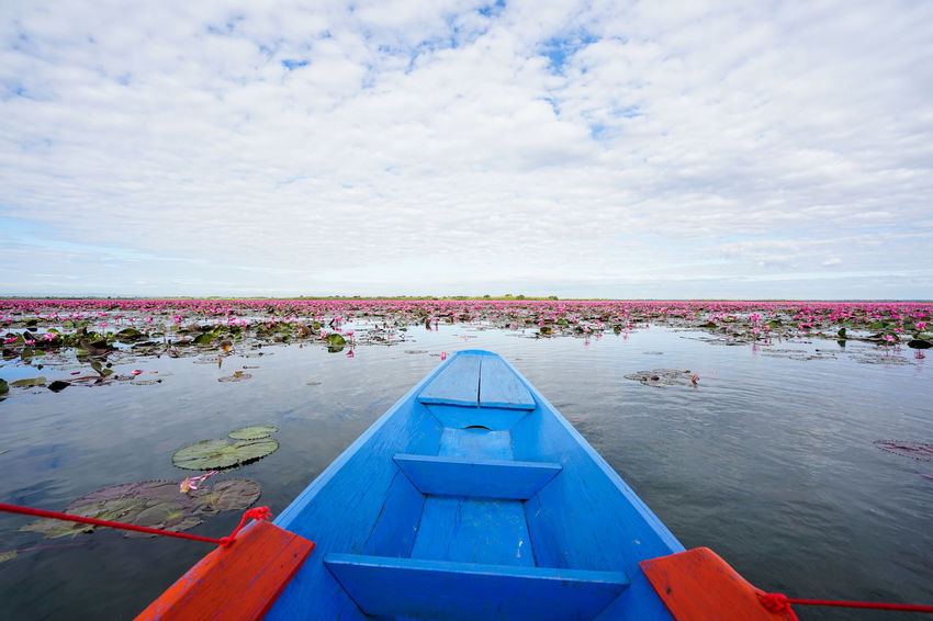 Water Sky Cloud - Sky Day Nature Nautical Vessel Beauty In Nature Sea Scenics - Nature Outdoors Crowd Blue Large Group Of People Transportation Built Structure Architecture Kumphawapi Red Lotus In Thailand Red Lotus Thailand Red Lotus Lake ทะเลบัวแดง
