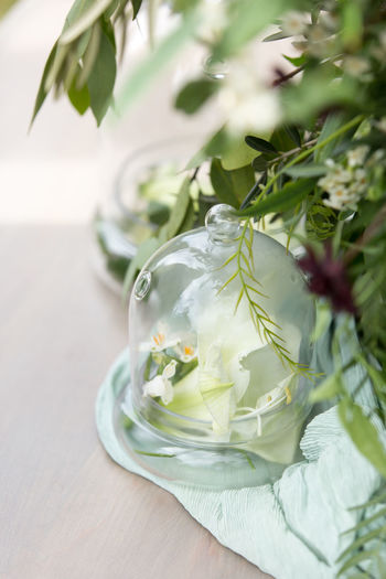 Close-up of flower in glass on table