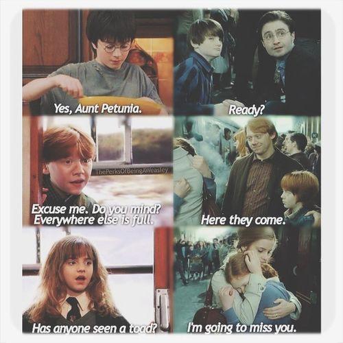 Awww ?? Harry Potter Ron Weasley Hermione Granger