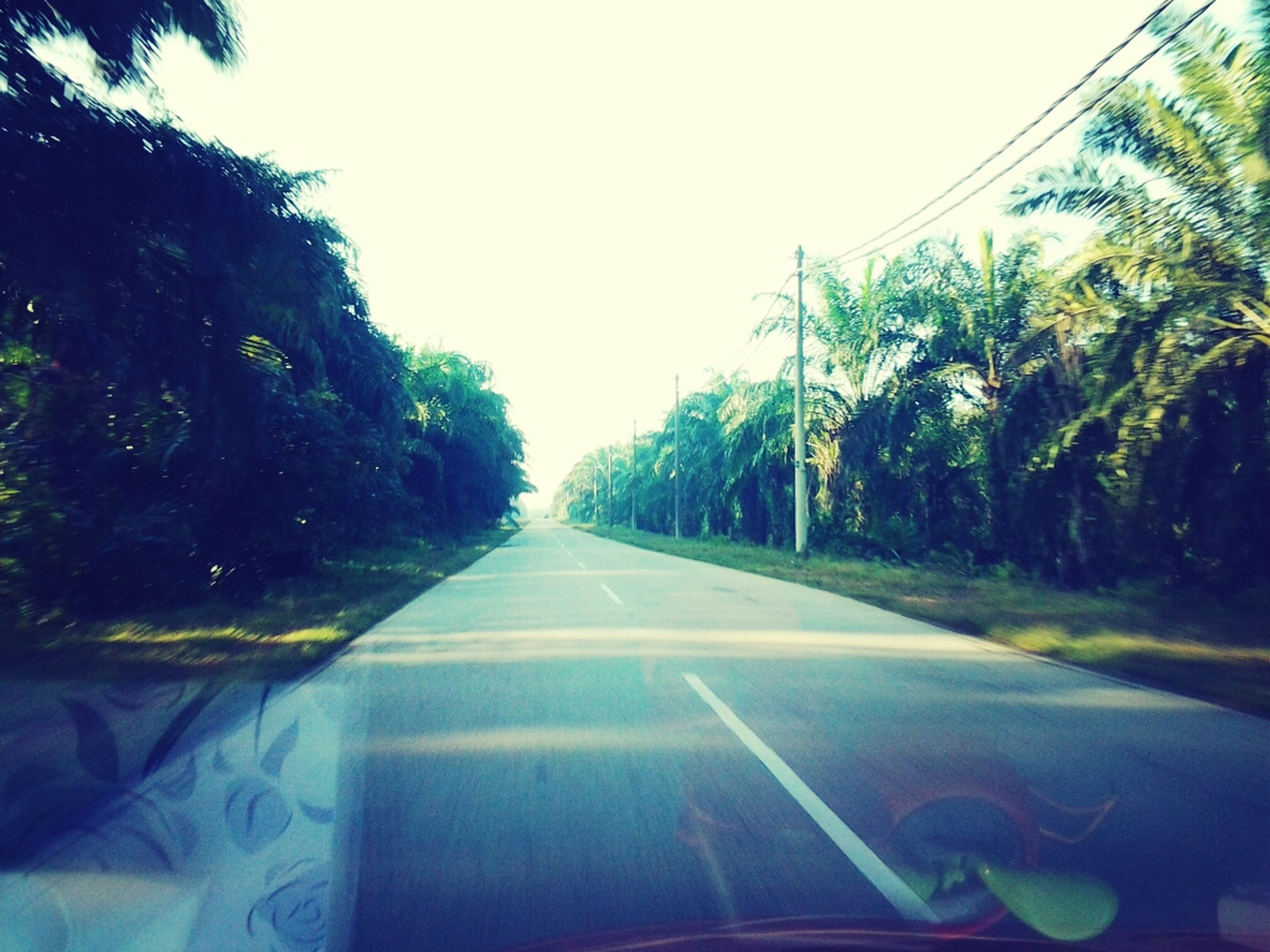 transportation, the way forward, road, tree, diminishing perspective, clear sky, road marking, vanishing point, car, windshield, mode of transport, sky, vehicle interior, land vehicle, country road, glass - material, street, growth, transparent, long