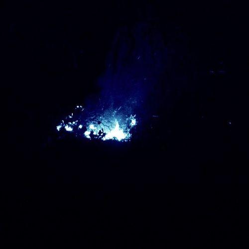 Fireaking photos] fire Bluefire Fire !