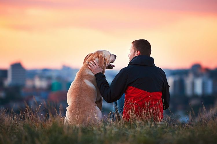 Enjoying sun. Man is caressing yellow labrador retriever. Young man sitting on the hill with his dog. Amazing sunrise in the city. Prague in Czech Republic. Animal Themes Caress Cheerful City Dog Dog Love Dogslife Domestic Animals Enjoy Enjoying Life Feeling Friendship Happy Hug Labrador Man Meadow Nature Outdoors Pets Sunrise Sunrise_sunsets_aroundworld Sunset Togetherness Touching