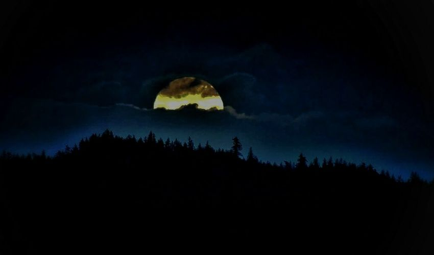 The Great Outdoors - 2017 EyeEm Awards Night Moon Tree Silhouette Forest Nature Moonlight Outdoors No People Beauty In Nature Sky Star - Space Space Full Moon Cloud - Sky West Coast Canadian Living