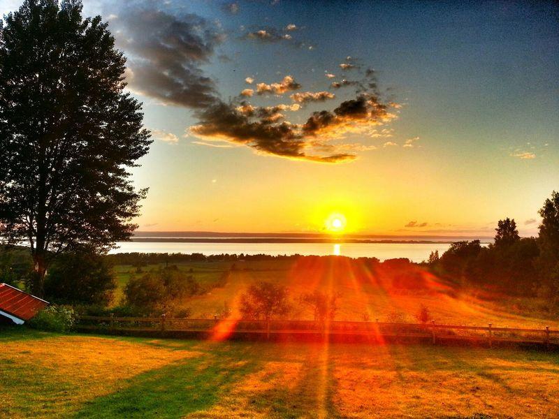 Summer Vibes Sweden Sunset Art