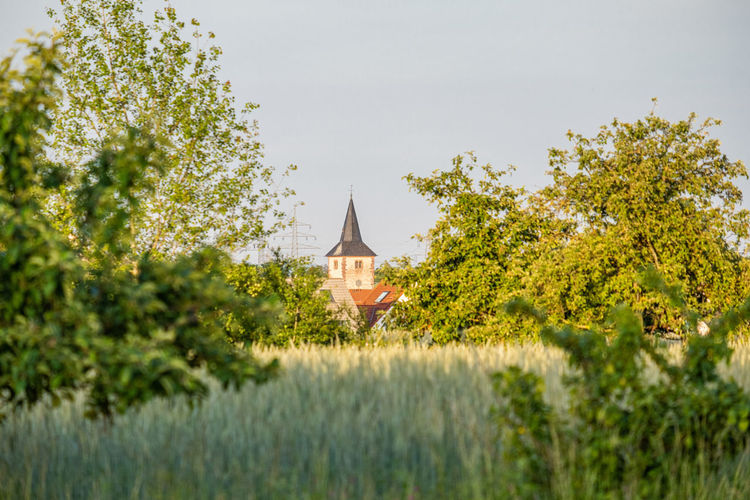 Die Kirche im Dorf lassen Landscape Photography Landschaft Landschaftsfoto Landschaftsfotografie Lanfschaftsfotografie Lanscape Nandschaftsfoto Natur Nature Naturfoto Agriculrural Agriculture Cornfield Cultivated Land Landscape Landscape Lover Sky Beauty In Nature Plant No People Field Land Outdoors Dreieich Offenthal Agriculture Agricultural Field Agricultural Land Cultivated Field Cereal Plant Cereal Field Wheat Field Architecture Built Structure Building Exterior Tree Building Green Color Religion Place Of Worship Spirituality Belief Day Church Church Tower Kirchturmspitze Kirchturm