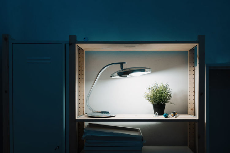 Lighting Equipment Indoors  No People Electric Lamp Domestic Room Plant Nature Potted Plant Furniture Mirror Table Blue Home Interior Sink Day Illuminated Light Absence Bathroom Home Threeweeksgalicia My Best Photo