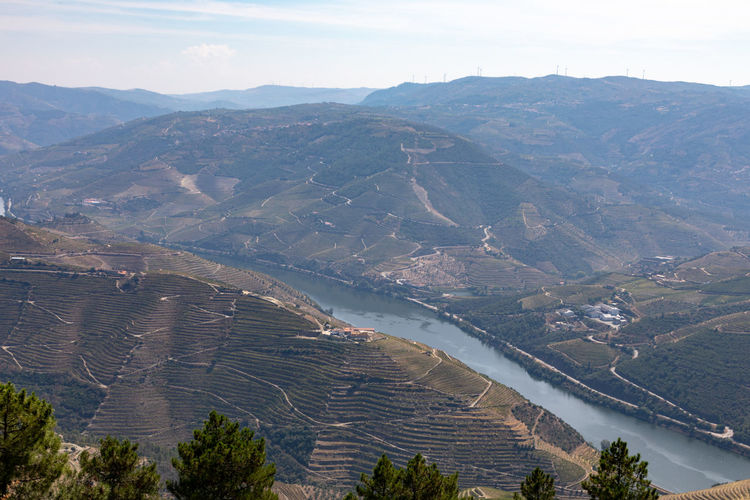 Vineyards on hills around River Douro in Portugal. , the oldest wine region in the world Beauty In Nature Day Environment High Angle View Idyllic Land Landscape Mountain Mountain Range Nature No People Non-urban Scene Outdoors River Scenics - Nature Sky Tranquil Scene Tranquility Water