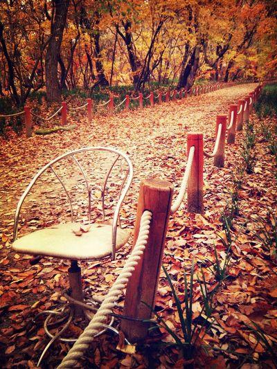 I wanna go there.. Relaxing Photo Last Season Sensitive