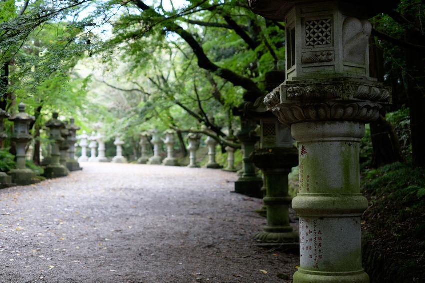 香取神宮/Katori Jingu Shrine Fujifilm Fujifilm X-E2 Fujifilm_xseries Japan Japan Photography Katori Jinguu Shrine Shrine Of Japan 日本 神社 香取神宮