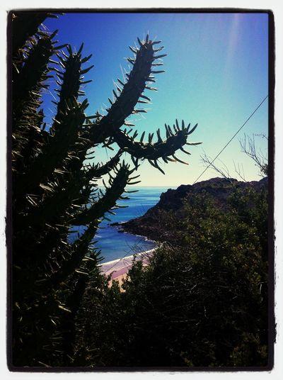 Enjoying The Sun Sunshine Sea Relaxing