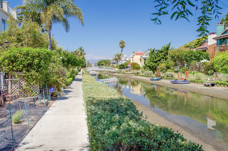 Residential area with canals in Venice Beach, Los Angeles, California Architecture Blue Building Building Exterior Built Structure Canal Clear Sky Day Diminishing Perspective Direction Footpath Growth Nature No People Outdoors Plant Reflection Sky Sunlight Swimming Pool The Way Forward Tree Water