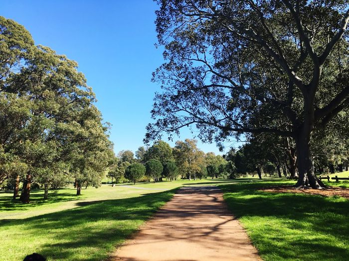 First day of Spring in Sydney, Australia Parramatta Park Springtime Colour Of Life
