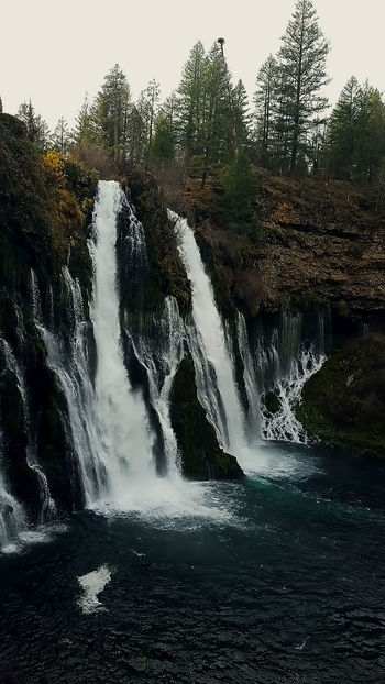 Burney Falls in northern California Beauty In Nature Burney Falls Day Forest Nature No People Outdoors Scenics Tranquil Scene Tree Water Waterfall