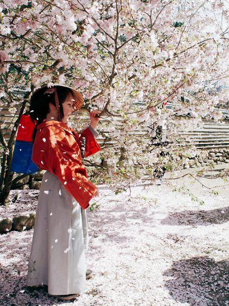Little samurai in the cherryblossom rain... Streetphotography Streetportrait Cherryblossomfestival Childhood Child Sunny Day Spring Asian Culture Enjoying The Sun Gardening Weekend Activities Up Close Street Photography Millennial Pink