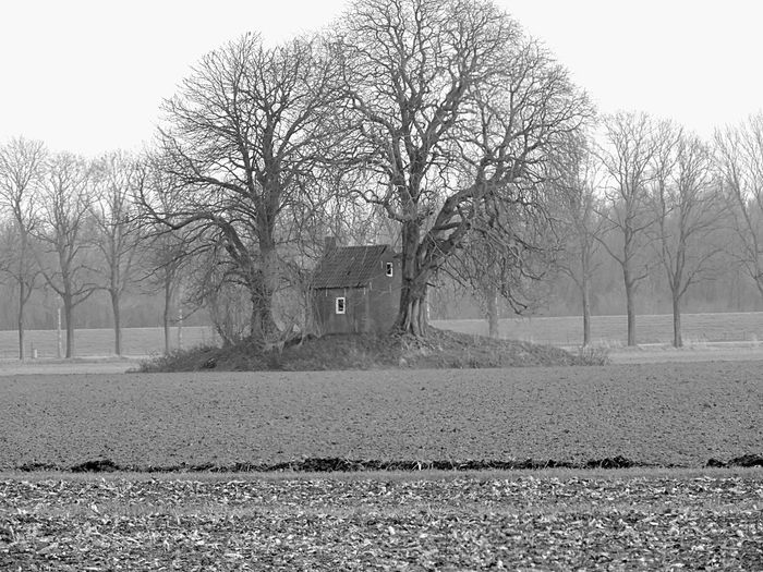 Landscape Hugging A Tree Trees Nature Blackandwhite