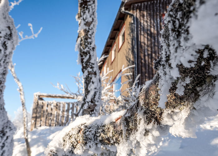 Vita Renen restaurant in the mountains Architecture Bare Tree Beauty In Nature Building Exterior Built Structure Close-up Cold Temperature Day Frozen Icicle Low Angle View Nature No People Outdoors Sky Snow Snowdrift Tree Weather Winter