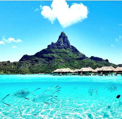 Bora-bora my island Pretty♡ First Eyeem Photo Enjoying The View Believe BeLike Amazing View Polynesian Amour ❤ 🌴☀️🐚🌺