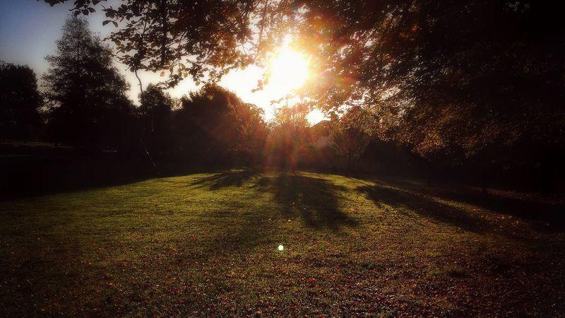 Autumn Colors Of Autumn Sunrise Landscape