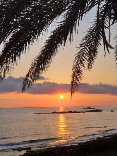 Alaiye gün batarken @MustafaAydinTurk Samsungphotography S9+ Gunbatimi Sunset Alanya Antalya Water Sea Sunset Beauty Beach Tree Silhouette Sun Reflection Sunlight Romantic Sky Salt Basin Majestic