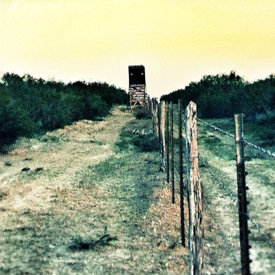 Almost that time of the year already. Gosh this year flew right by me... Zapataranch Munozranch Southtexas Texaspride deerblind barbedwire cedarfencepost instagramtexas texasigers riograndevalleyigers brushcountry