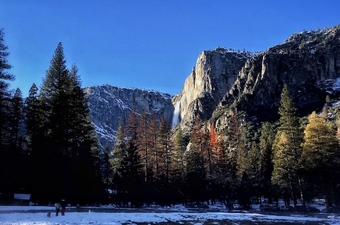 Yosemite National Park in the winter Yosemite Falls El Capitan Snow Winter Tree Cold Temperature Nature Beauty In Nature Cold Tranquility Scenics Clear Sky Outdoors Tranquil Scene Mountain Sky Day Shades Of Winter