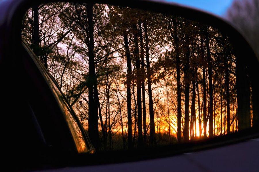 Reflection Split Toning Sunset Nature Canon T6s Tree