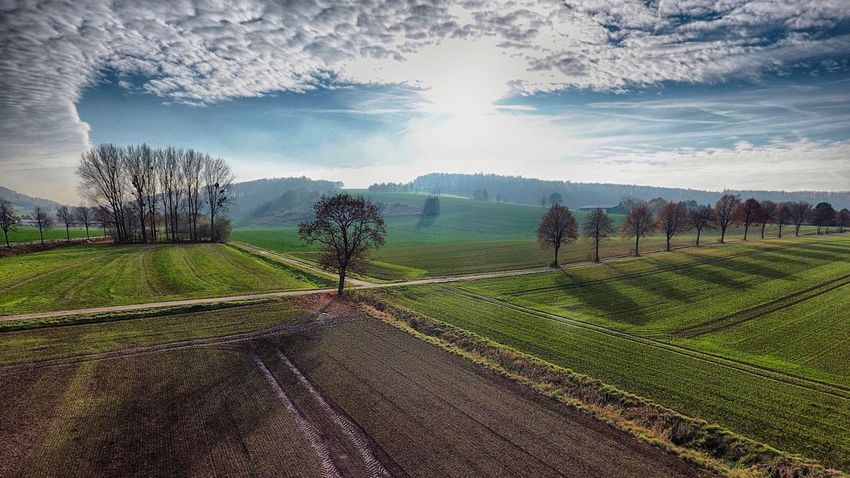 Bad Gandersheim Gandersheim Bentierode Rimmerode Dji Dji Phantom DJI Phantom 4 Phantom 4 Cloudporn Skyporn Roswithastadt Gan © MJ ® Landscape Agriculture Sky Field Cloud - Sky Outdoors Mountain Tree Beauty In Nature No People Nature My Year My View